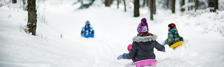 Children sledding in winter forest