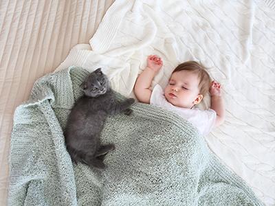 little girl sleeping with cat