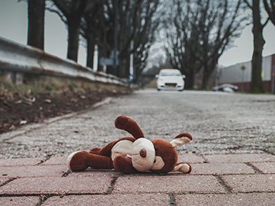 stuffed toy dog lying on the road