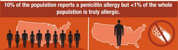 Penicillin allergy infographic