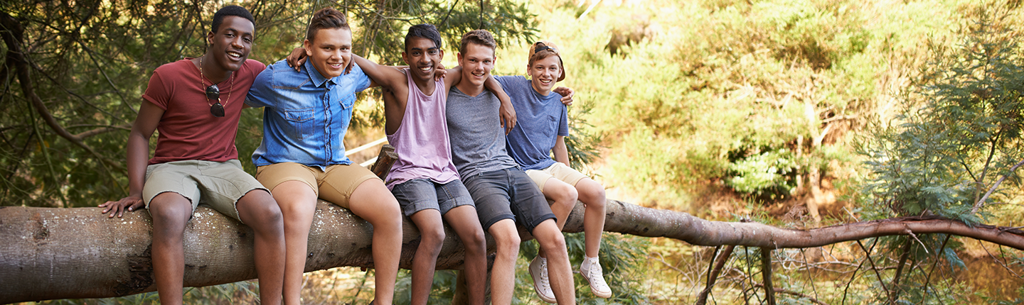 group of boys sitting on a tree branch